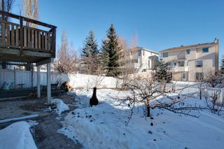 Photo 19: 9107 Scurfield Drive NW in Calgary: 2 Storey for sale : MLS®# C3598147
