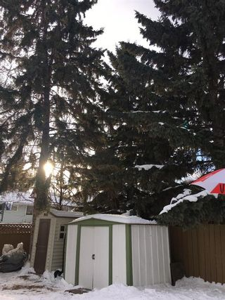 Photo 32: 311 Lynnview Way SE in Calgary: Ogden Detached for sale : MLS®# A1073491