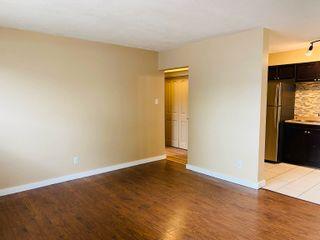 Photo 6: 7111 80 Avenue in Edmonton: Zone 17 Condo for sale : MLS®# E4259009