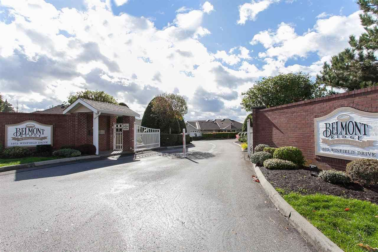 """Main Photo: 57 1973 WINFIELD Drive in Abbotsford: Abbotsford East Townhouse for sale in """"Belmont Ridge"""" : MLS®# R2252224"""