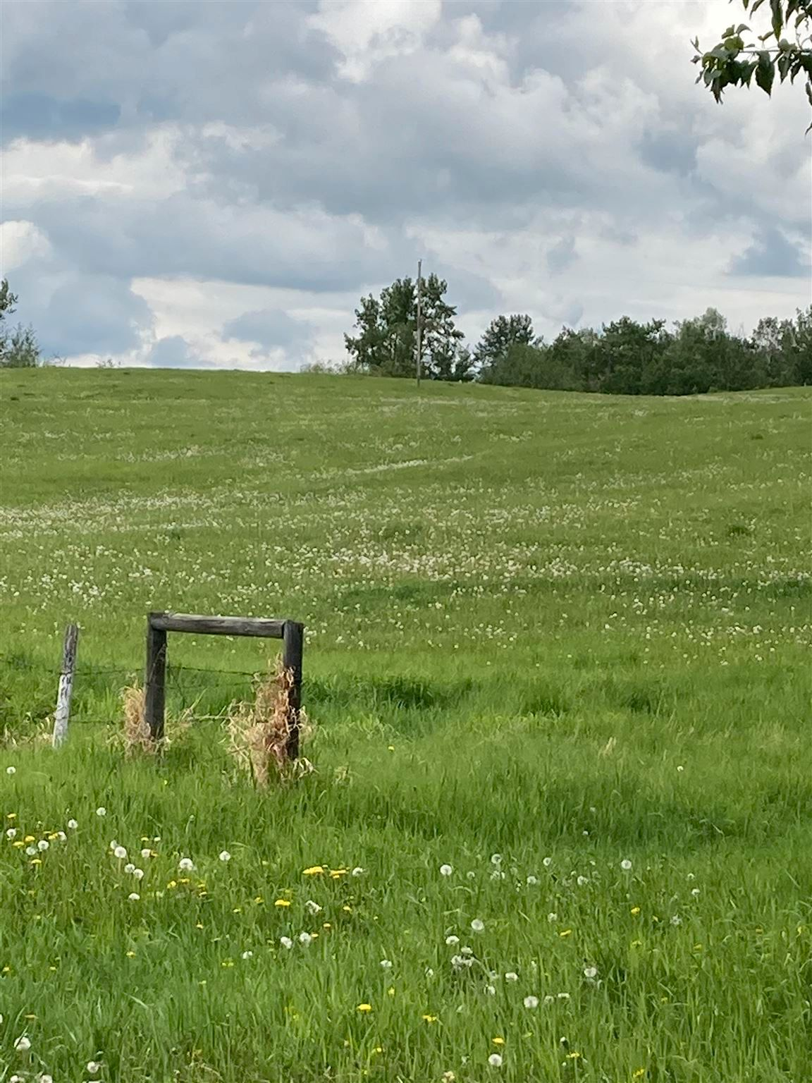 Main Photo: TWP 502 RR 215: Rural Leduc County Rural Land/Vacant Lot for sale : MLS®# E4249465