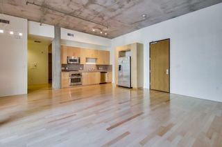 Photo 4: DOWNTOWN Condo for sale : 1 bedrooms : 1050 Island Ave #324 in San Diego