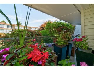 """Photo 36: 101 1341 GEORGE Street: White Rock Condo for sale in """"Oceanview"""" (South Surrey White Rock)  : MLS®# R2600581"""