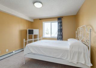 Photo 14: 2212 6224 17 Avenue SE in Calgary: Red Carpet Apartment for sale : MLS®# A1115091