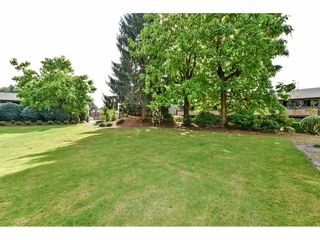 """Photo 17: 1214 34909 OLD YALE Road in Abbotsford: Abbotsford East Townhouse for sale in """"The Gardens"""" : MLS®# R2115927"""