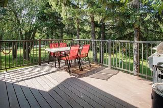 Photo 22: 30039 RR 14: Rural Mountain View County Detached for sale : MLS®# A1022868