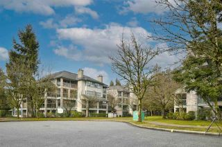 """Photo 1: PH8A 7025 STRIDE Avenue in Burnaby: Edmonds BE Condo for sale in """"Somerset Hill"""" (Burnaby East)  : MLS®# R2591412"""