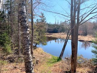Photo 16: 262 Smith Mill Road in Lower Shinimicas: 102N-North Of Hwy 104 Residential for sale (Northern Region)  : MLS®# 202007394