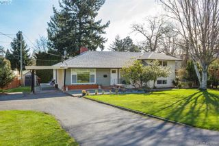 Photo 1: 4033 Cedar Hill Rd in VICTORIA: SE Mt Doug House for sale (Saanich East)  : MLS®# 810108