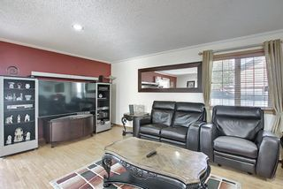 Photo 22: 187 Bridlewood Circle SW in Calgary: Bridlewood Detached for sale : MLS®# A1110273