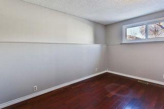 Photo 22: 99 ABERGALE Place NE in Calgary: Abbeydale Detached for sale : MLS®# C4293699