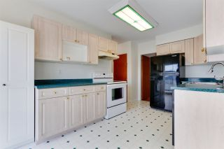 Photo 13: 18 N SEA Avenue in Burnaby: Capitol Hill BN House for sale (Burnaby North)  : MLS®# R2527053