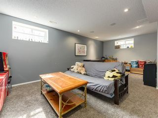 Photo 32: 17 ROYAL ELM Way NW in Calgary: Royal Oak Detached for sale : MLS®# A1034855