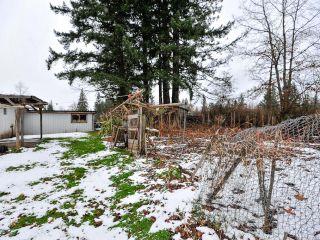 Photo 29: 4812 N Island Hwy in COURTENAY: CV Courtenay City House for sale (Comox Valley)  : MLS®# 779950