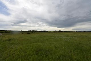 Photo 11: 320232 Range Road 23: Rural Mountain View County Land for sale : MLS®# A1015216