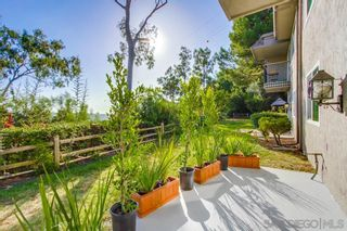 Photo 34: MISSION VALLEY Townhouse for sale : 3 bedrooms : 6211 Caminito Andreta in San Diego