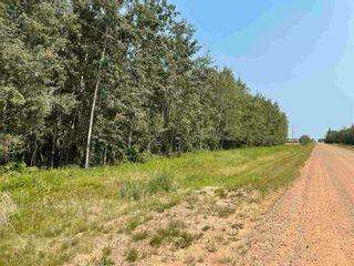 Photo 12: RGE RD 223 Twp Rd 594: Rural Thorhild County Rural Land/Vacant Lot for sale : MLS®# E4256609