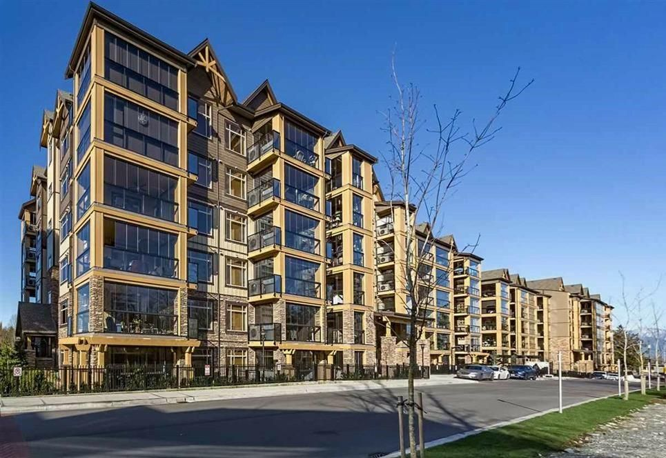 """Main Photo: 503 8157 207 Street in Langley: Willoughby Heights Condo for sale in """"York Creek Parkside II (Building B)"""" : MLS®# R2559343"""