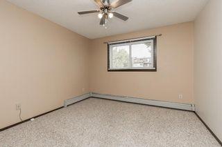 Photo 9: 206 3910 23 Avenue S: Lethbridge Apartment for sale : MLS®# A1142174