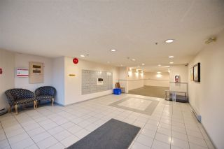 Photo 16: 110 3051 AIREY DRIVE in Richmond: West Cambie Condo for sale : MLS®# R2233165
