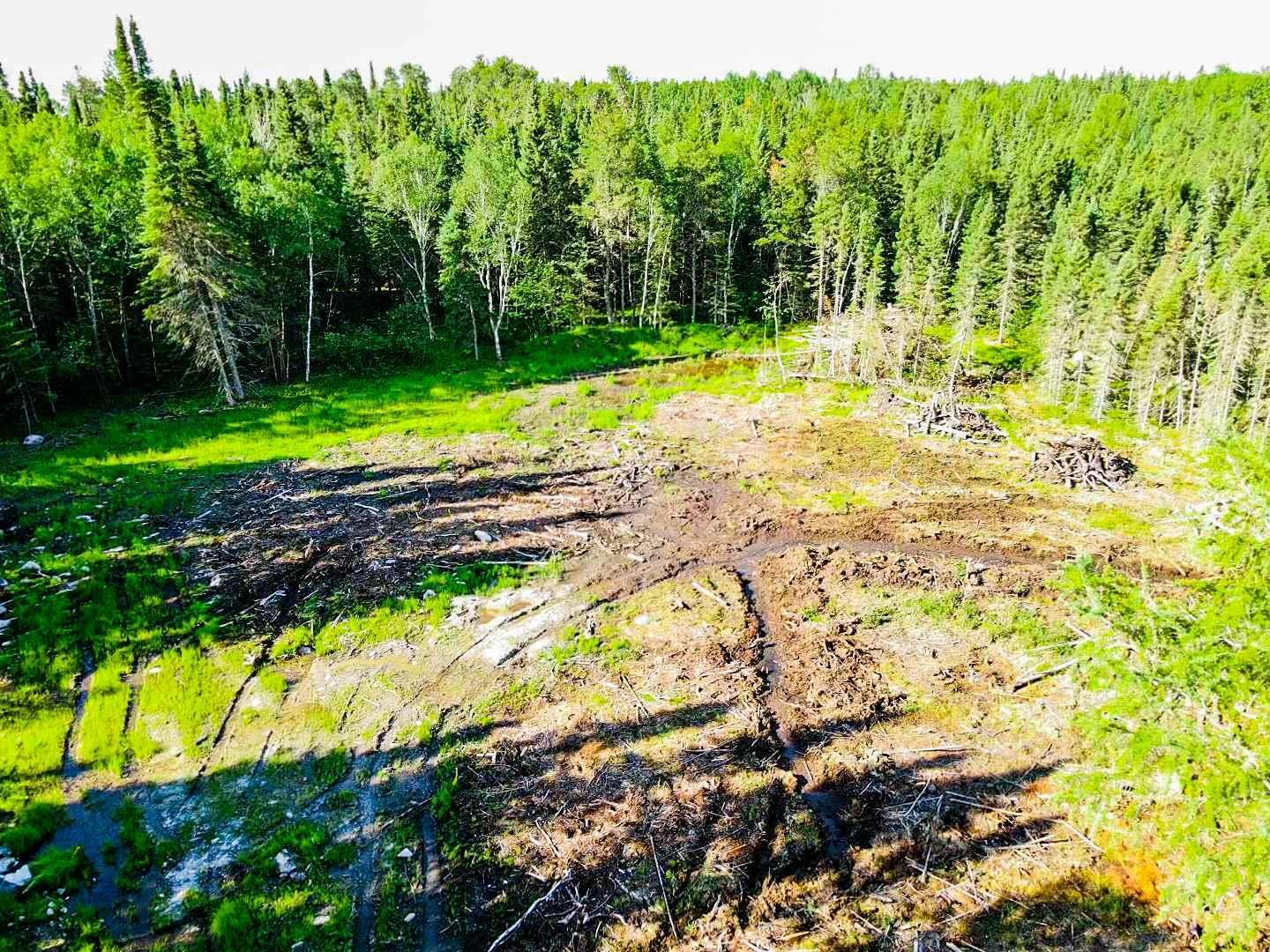 Main Photo: 127 Eagle Bay Road in Kenora: Vacant Land for sale : MLS®# TB202857