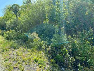 Photo 5: Lot 2 Egypt Road in Little Harbour: 108-Rural Pictou County Vacant Land for sale (Northern Region)  : MLS®# 202117045