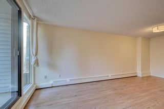 Photo 22: 201 2425 90 Avenue SW in Calgary: Palliser Apartment for sale : MLS®# A1052664