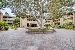 Photo 2: PACIFIC BEACH Condo for rent : 1 bedrooms : 1885 Diamond St. #116 in San Diego