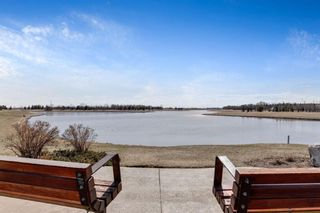 Photo 24: 328 1717 60 Street SE in Calgary: Red Carpet Apartment for sale : MLS®# A1090437