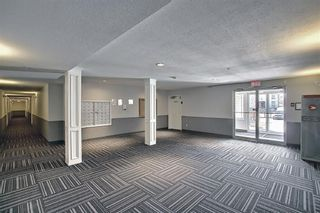 Photo 40: 3212 604 8 Street SW: Airdrie Apartment for sale : MLS®# A1090044