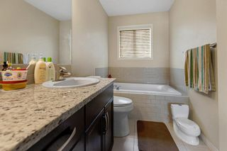 Photo 23: 155 Martha's Meadow Close NE in Calgary: Martindale Detached for sale : MLS®# A1117782