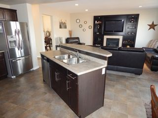 Photo 8: 27 Dragonfly Court in Winnipeg: Sage Creek House for sale ()  : MLS®# 1510273