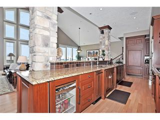 Photo 8: 18 DISCOVERY VISTA Point(e) SW in Calgary: Discovery Ridge House for sale : MLS®# C4018901