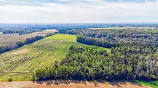 Photo 2: rr 273 twp 481: Rural Leduc County Rural Land/Vacant Lot for sale : MLS®# E4236709