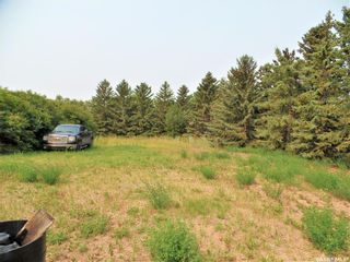Photo 31: RM of Hearts Hill 9.99 Acres in Heart's Hill: Residential for sale (Heart's Hill Rm No. 352)  : MLS®# SK866598
