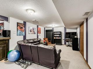 Photo 38: 216 MT COPPER Park SE in Calgary: McKenzie Lake Detached for sale : MLS®# A1025995