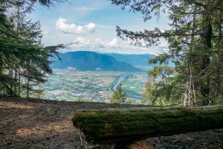 Photo 2: LT.2 OLD YALE ROAD in Abbotsford: Sumas Prairie Land for sale : MLS®# R2574346