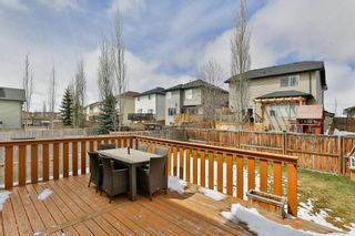 Photo 30: 246 CITADEL ESTATES Heights NW in Calgary: Citadel Detached for sale : MLS®# C4242147