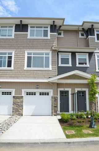 """Photo 1: 20 34230 ELMWOOD Drive in Abbotsford: Central Abbotsford Townhouse for sale in """"Ten Oaks"""" : MLS®# R2175066"""