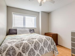 Photo 21: 9 Cambria Place: Strathmore Detached for sale : MLS®# A1051462
