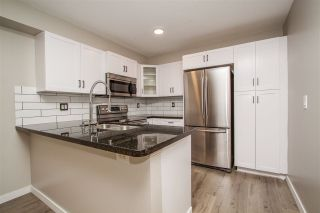 """Photo 2: 180 20180 FRASER Highway in Langley: Langley City Condo for sale in """"PADDINGTON STATION"""" : MLS®# R2257972"""
