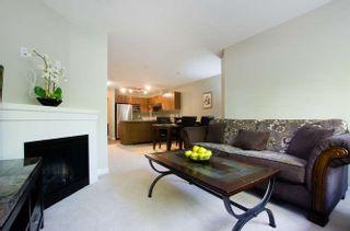 """Photo 5: 114 6828 ECKERSLEY Road in Richmond: Brighouse Condo for sale in """"SAFFRON"""" : MLS®# R2169537"""