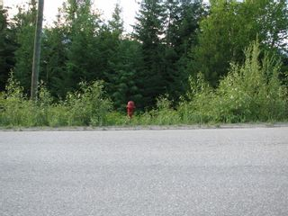 Photo 12: 5049 Ivy Rd: Eagle Bay Land Only for sale (SHuswap)  : MLS®# 10201912
