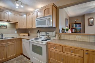 Photo 3: 311 8604 48 Avenue NW in Calgary: Bowness Apartment for sale : MLS®# A1113873
