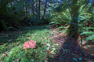Photo 76: Lot 2 Eagles Dr in : CV Courtenay North Land for sale (Comox Valley)  : MLS®# 869395