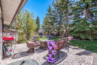 Photo 28: 20 Pineland Bay NE in Calgary: Pineridge Detached for sale : MLS®# A1108452