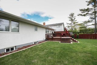 Photo 30: 249 Ronald Street in Winnipeg: Grace Hospital Residential for sale (5F)  : MLS®# 202113019