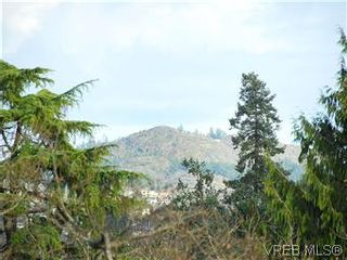 Photo 18: 3938 Wilkinson Rd in VICTORIA: SW Strawberry Vale House for sale (Saanich West)  : MLS®# 556826