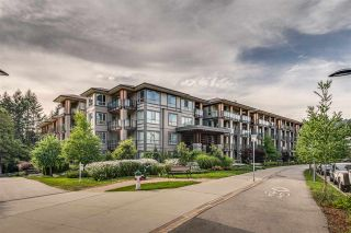 """Photo 21: 419 3399 NOEL Drive in Burnaby: Sullivan Heights Condo for sale in """"CAMERON"""" (Burnaby North)  : MLS®# R2482444"""