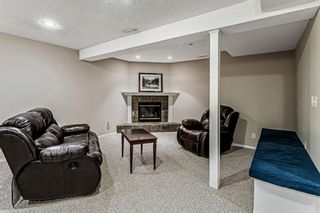 Photo 28: 139 Appletree Close SE in Calgary: Applewood Park Detached for sale : MLS®# A1022936